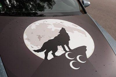 Francúzsko zakázalo tureckú ultranacionalistickú organizáciu Siví vlci, Turecko hrozí odvetou