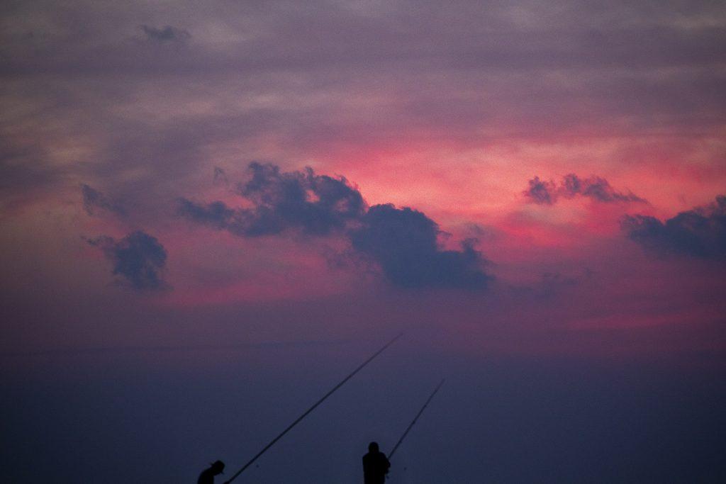 Štátna aféra v Česku: Mŕtve ryby, mlčiaci rybári