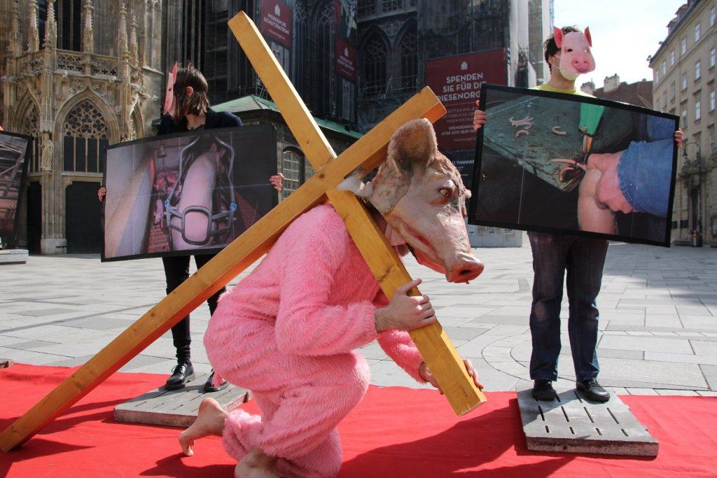 Prasa na kríži vo Viedni. Kuffa hovorí o primitívnosti: Predstavte si, ako by reagovali moslimovia